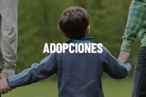 Legaltium - Servicios Juridicos - Contratar Abogado Adopciones